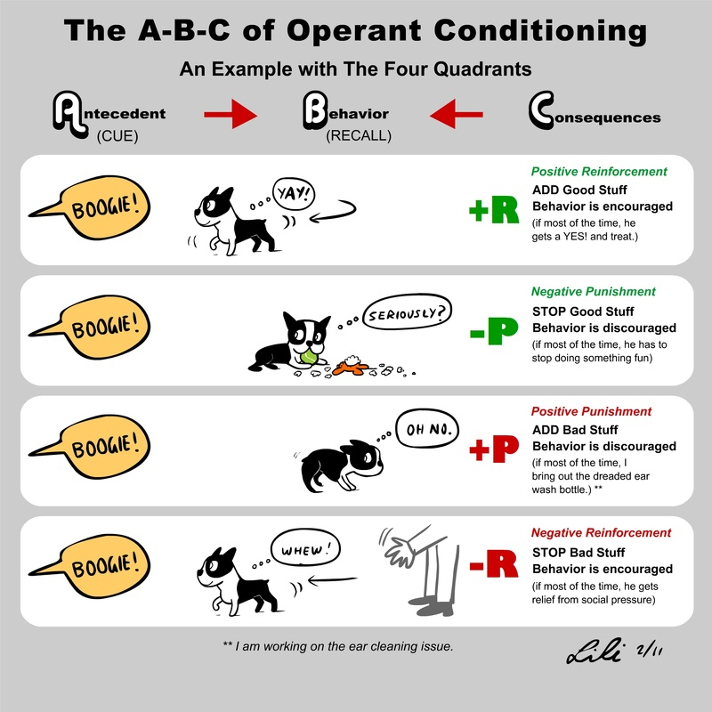 Operant Conditioning Dog Training Examples